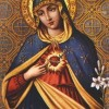 7 Quick Takes (8/23/13): Mary, Reading & Traveling
