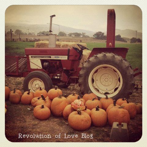 Revolution of Love Blog - phrf46a2