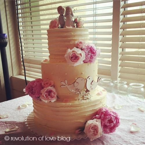 © revolution of love blog - cwa_cake_wed
