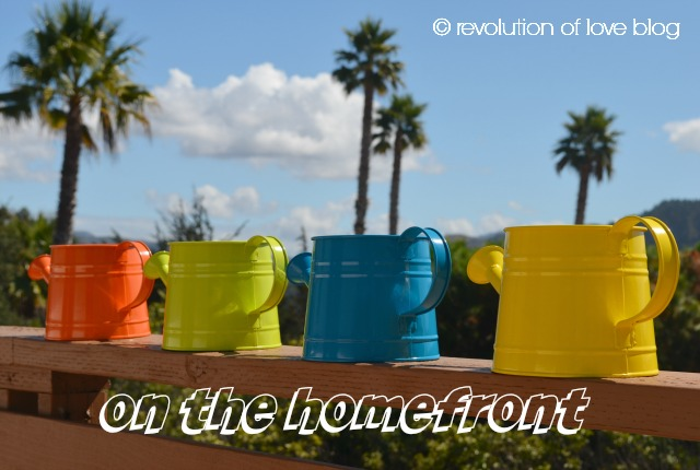 revolution of love blog - od_logo_home2