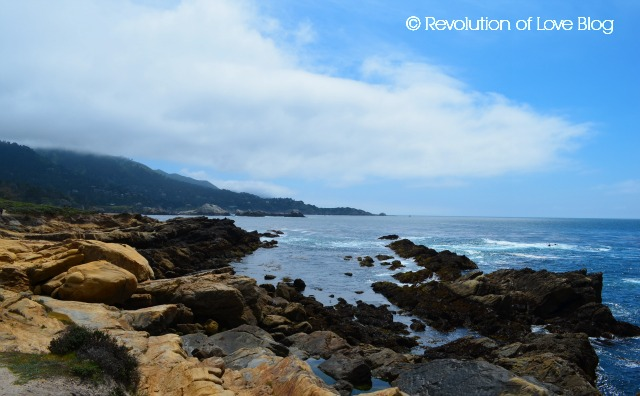 point_lobos_1