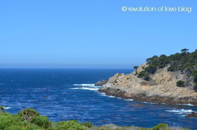 © revolution of love blog - point_lobos_3